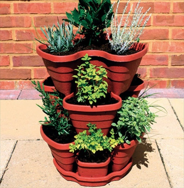 3 Tier Strawberry Planter: Let's Grow Strawberry / Herb Planter
