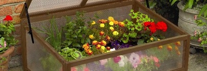 Greenhouse, Grow Frames, Tunnels & Cloches