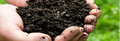 Compost and Fertilisers