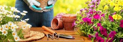 Garden Tools & Planters