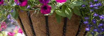 Hanging Baskets, Window Boxes & Hayracks