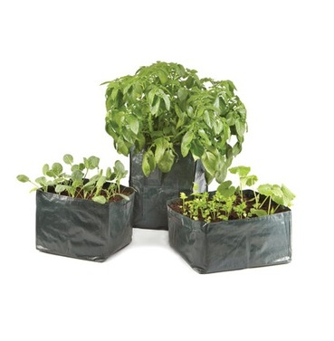 Mixed Vegetables Variety Trough Bag Planters x 3 Reusable Pack