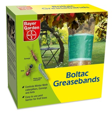 Boltac Tree Grease Bands - Pest Control - Bayer Garden