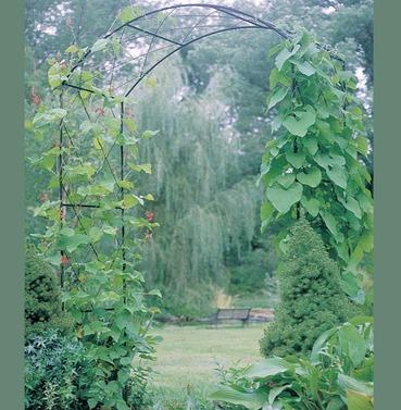 Monet Garden Rose Arch - Poppy Forge - 13mm Solid Bar Construction