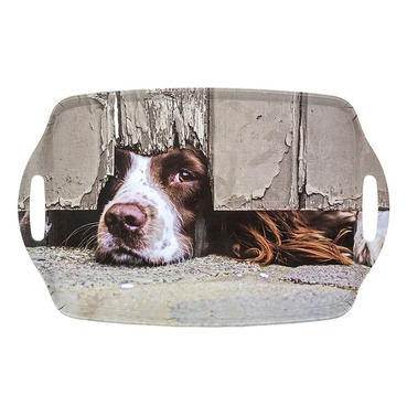 I Spy Spaniel Tray - Country Matters Tea Tray