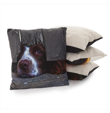 I Spy Spaniel Cushion - Country Matters Dog Print Cushion