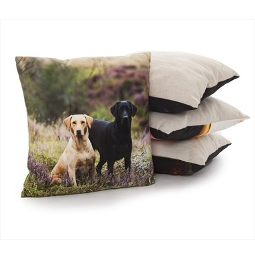Labs on Moor Cushion - Country Matters Dog Print Cushion