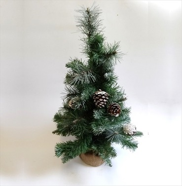 Mini Christmas Tree Frosted with Cones - 60cm