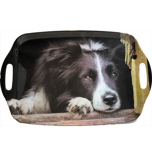 Collie Chilling Out Tray - Country Matters Tea Tray