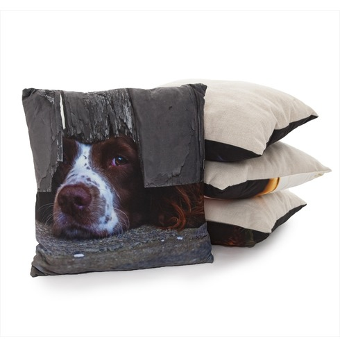 I Spy Spaniel Cushion - Country Matters Dog Print Cushion