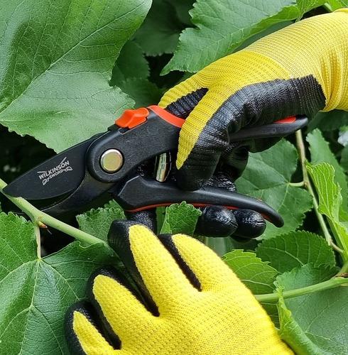 Wilkinson Sword Secateurs and Gardening Gloves Combination Deal