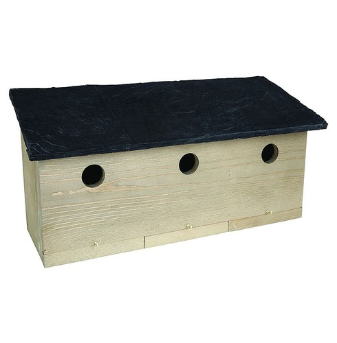 Sparrow Colony Nest Bird Box