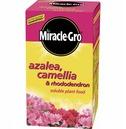 Azalea & Camellia Food - Miracle Gro Water Soluable