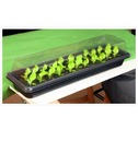Windowsill Seed & Plant Raising Propagator Kit - Gardman Grow It