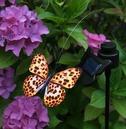 Solar Powered Flutterby Butterfly - Realistic Fluttering Motion - Leopard