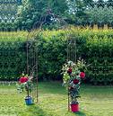 Vintage Metal Garden Rose Arch - Aged Rusty Brown
