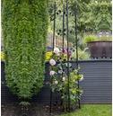 Botanico Easy Garden Obelisk From Gardman