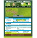 Gro-Sure Smart Patch Repair Box Lawn Seed - 2kg