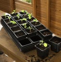 Growing Tray with 18 x 9cm Square Pots