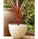 Low Honey Pot Planter - 37cm or 49cm - Suede